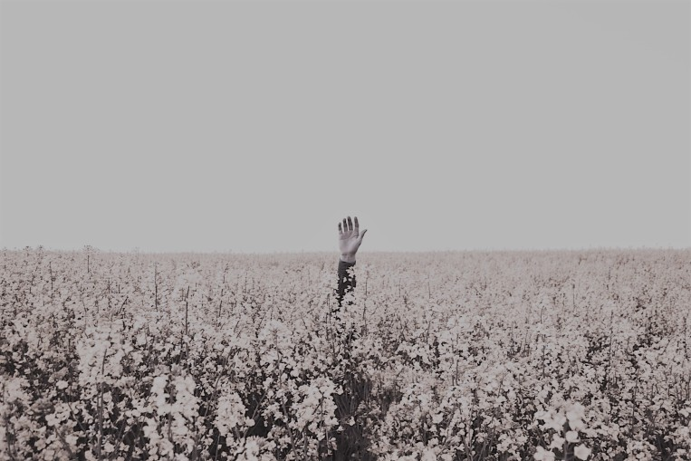 waving 2